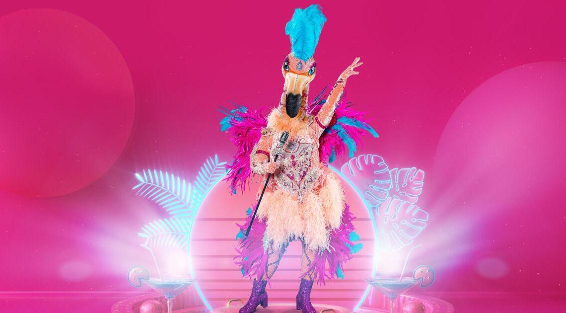 """""""The Masked Singer"""": Der Flamingo – alle Indizien & Hinweise zum Paradiesvogel"""