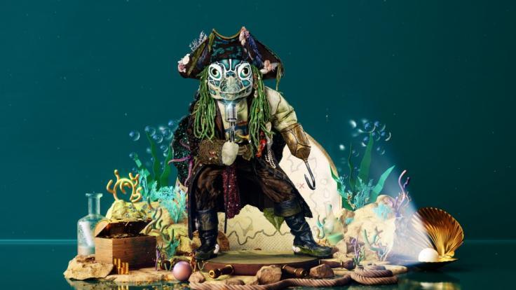 """""""The Masked Singer"""" 2021: Kleiner Abenteurer! Welcher Star versteckt sich im Schildkröten-Kostüm?"""