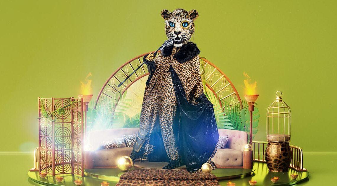 """""""The Masked Singer"""": Welcher Promi ist der Leopard? Alle Indizien & Hinweise"""