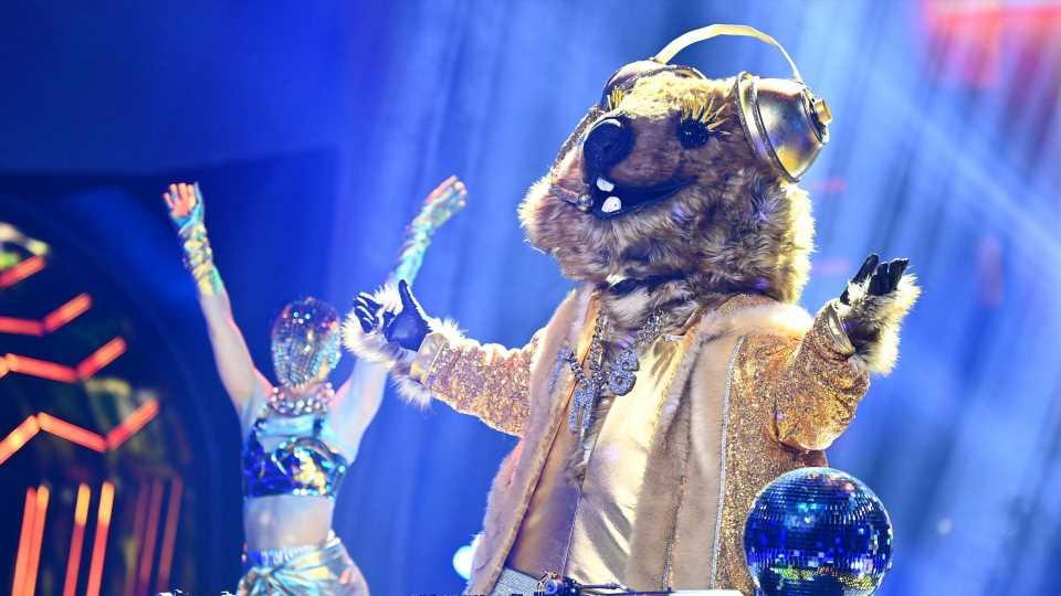Dieser Schauspieler steckte im Quokka-Kostüm