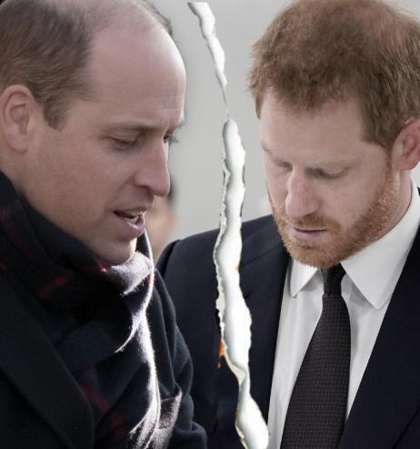 Prinz Harry & Prinz William: Erstes Gespräch endet mit bitterer Erkenntnis