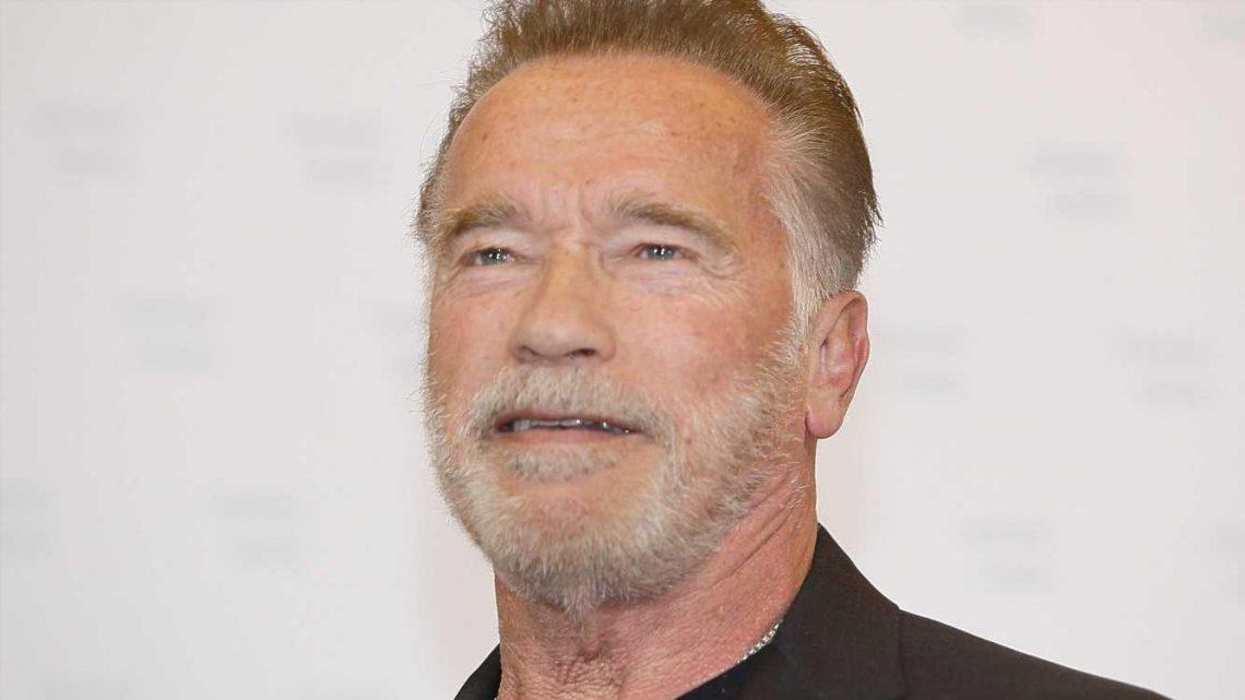 Eine echte Seltenheit: Arnold Schwarzeneggers Söhne Patrick und Joseph Baena trainieren zusammen