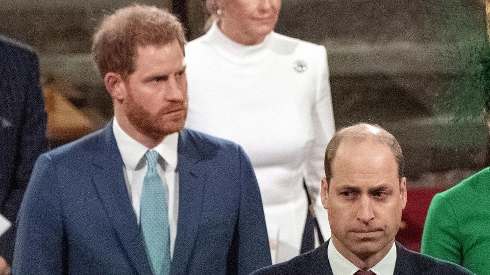 Brüderliche Annäherung: Prinz Harry und Prinz William segnen Diana-Statue ab