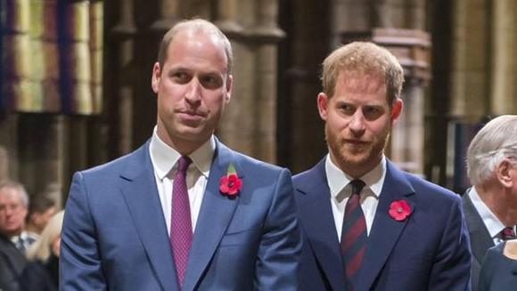 Vertragen sich Prinz Harry und Prinz William nun wegen Diana?