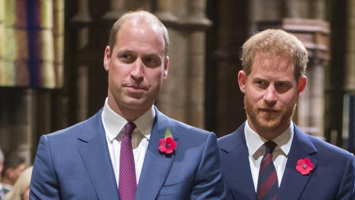 Prinz William in Sorge: Was enthüllt Prinz Harry als nächstes?