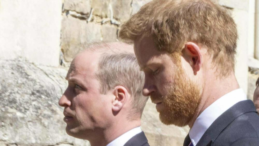 Skandal um Diana-Interview: William und Harry mit drastischen Worten