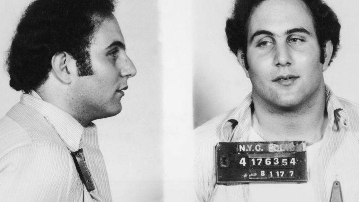"""""""The Sons of Sam"""" und andere: Diese True-Crime-Dokus blicken in die Psyche von Mördern"""