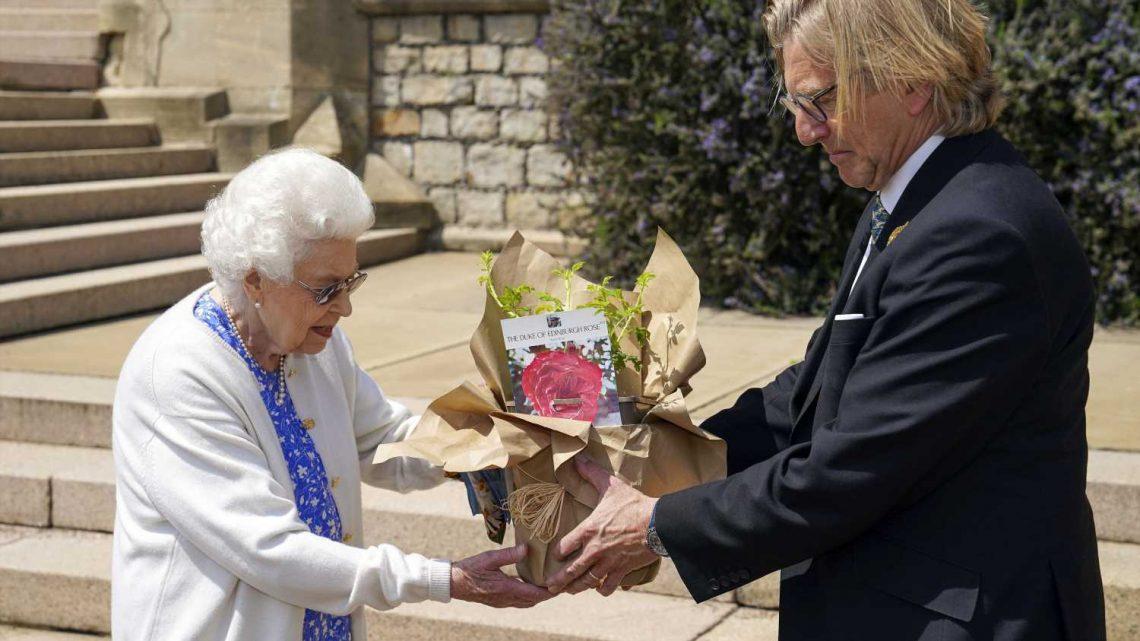 Zum 100. Geburtstag: Queen Elizabeth II. pflanzt ein Rose für ihren verstorbenen Mann Prinz Philip
