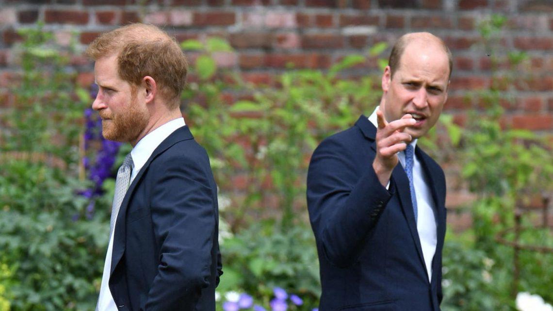 Prinz Harry und Prinz William: Keine Zeit für eine Versöhnung?