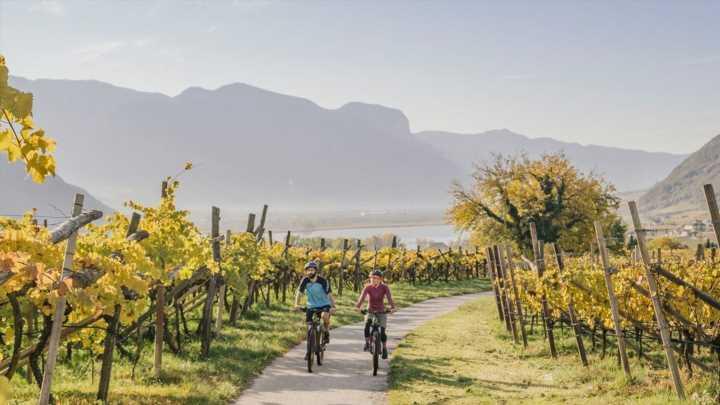 Ausflug in die Südtiroler Weinstraße