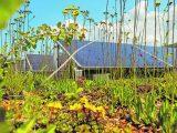 Ist Ihr Gebäude fit für das kommende Klima?
