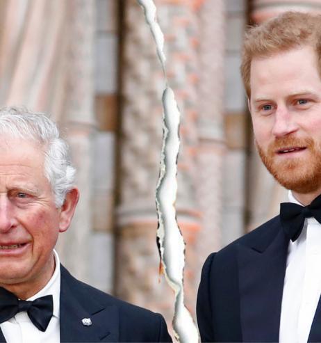 Prinz Charles: Kommt jetzt die Wende? Enthüllung über Prinz Harry