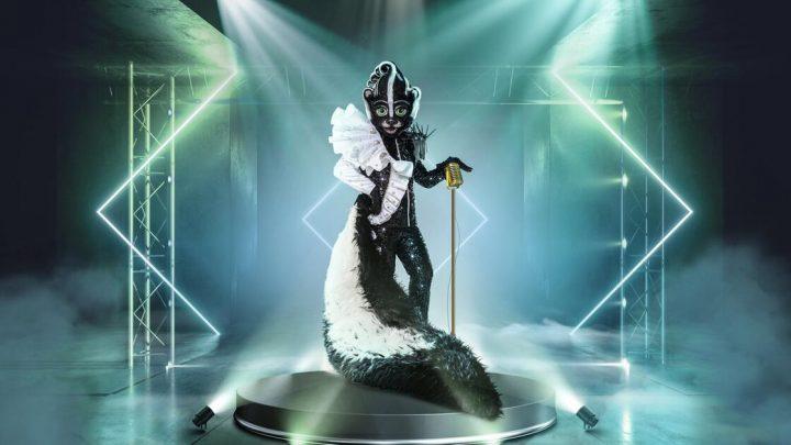 """""""The Masked Singer"""": Welcher Promi verbreitet seinen Duft im Stinktier-Kostüm?"""